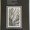 Beyond Colouring-in Instructional workbook back cover